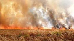 داعش يضرم النيران مجددا في مزارع بمحيط خانقين