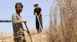 أعمال حفريات تقود الى مقبرة جماعية جديدة في الناصرية