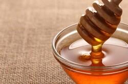 الزراعة تحظر دخول العسل للعراق وتوجه مناشدة للمحتجين