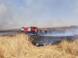 اخماد حرائق بأراض زراعية في خانقين