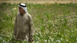 الزراعة تعلن تخفيض أسعار أسمدة دعماً للفلاحين
