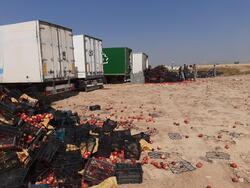 السطات العراقية تتلف اطنانا من الطماطم والتفاح الايراني