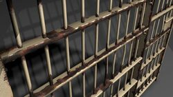 More than 600 accused and convicted persons released in Baghdad